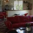 Belle villa à vendre entre Toulouse , l'union et Balma Image